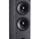 Davis Acoustics Dhavani